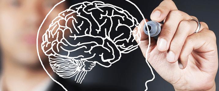 Nuovo Corso di Laurea Scienze e Tecniche Psicologiche Online – UniFortunato